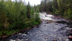Río y bosque como factor