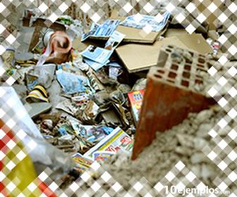 Los contaminantes causan daño al medio ambiente.