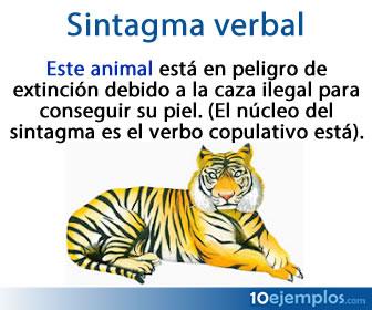 Los sintagmas están formados por una palabra núcleo y otras palabras que se agrupan en torno a dicho núcleo.